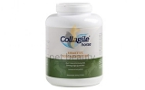 Collagile® Horse Bioaktive Kollagenpeptide, 2 Dosen à 2500g